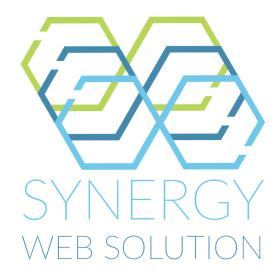 Synergy Web Solution