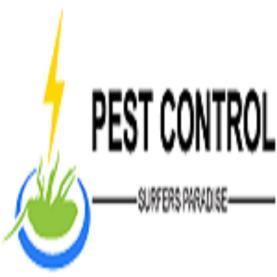 Pest Control Surfers Paradise