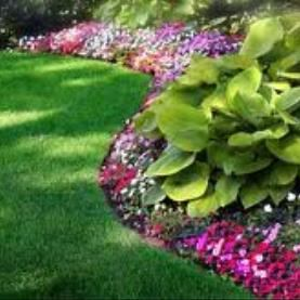 Above Expectations Lawn Maintenance
